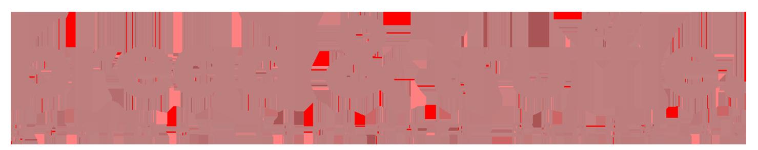 Bread & Truffle - Gourmet Focaccia Sandwich